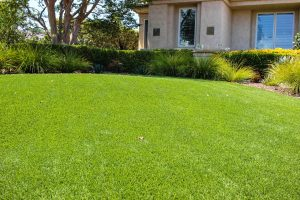 artificial turf installed in San Diego two-story home back yard near windows