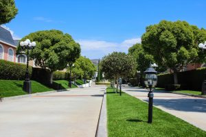Artificial lawn installed at apartment complex lining driveway