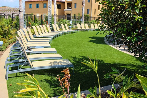 row of lounge chairs on artificial grass