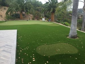 putting green with synthetic lawn