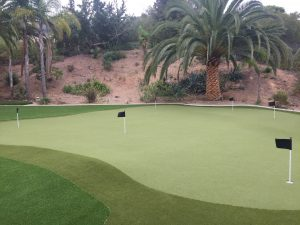 putting green in backyard with flags and palm trees