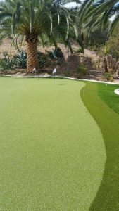 Backyard putting green under palm trees