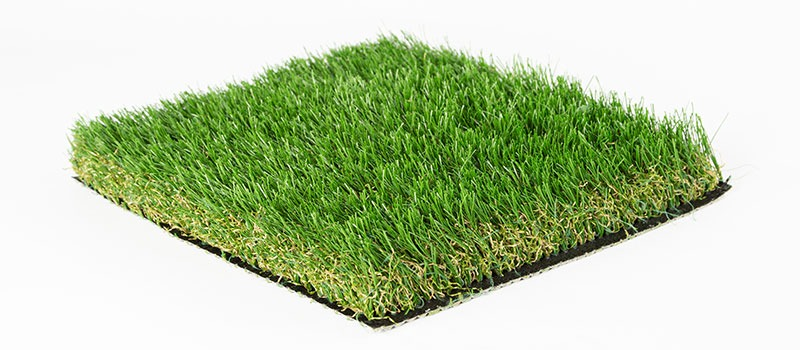 US Turf Malibu Fescue Product